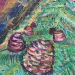 ヒマラヤスギ Cedars