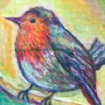 ロビン/ ヨーロッパコマドリ Robin