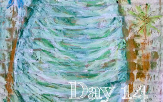 Advent day 14 「ヒマラヤスギの松ぼっくり」